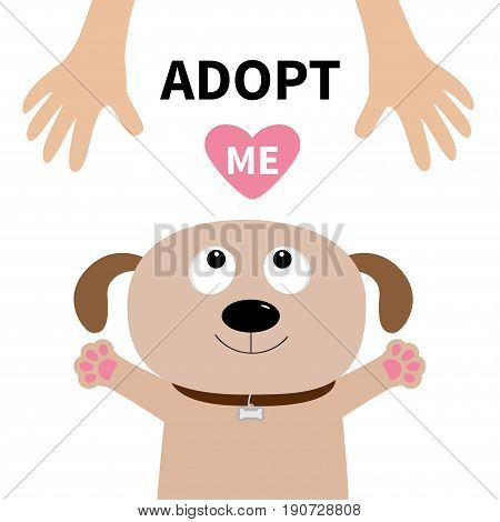 Adopt me. Dog face. Pet adoption. Puppy pooch looking up to human hand paw print hug. Flat design. Help homeless animal concept. Cute cartoon character. White background. Isolated. Vector