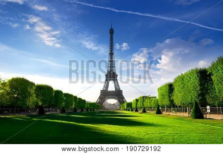 Eiffel Tower on parisian Champs de Mars in the morning, France