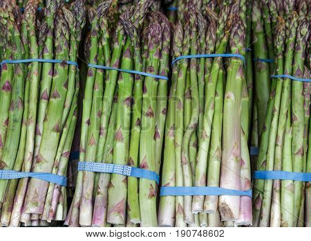 Bundles of Asparagus in a farmers market
