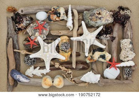 Abstract beach art with driftwood, seashells, rocks and seaweed on sand forming a background.