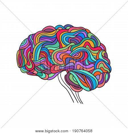 Creative concept of the human brain, vector
