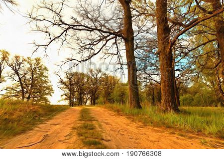 Forest roads on hilly terrain in the forest.
