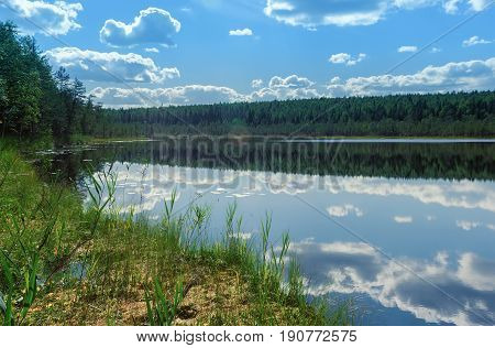 Summer landscape - forest lake with sky reflection on a water at sunny day. Russia Republic of Karelia.