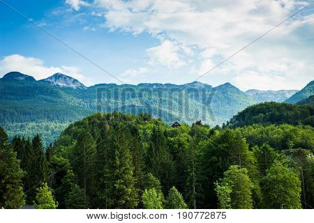 View Of Julian Alps  In Bohinj Lake Slovenia