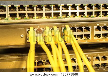 network cable connecting on network core switch close up