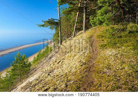 Footpath goes on the steep bank. Baltic Sea coastline Latvia.