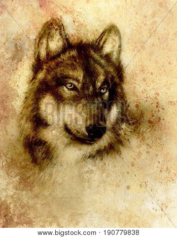 Wolf painting, old paper background and sepia effect