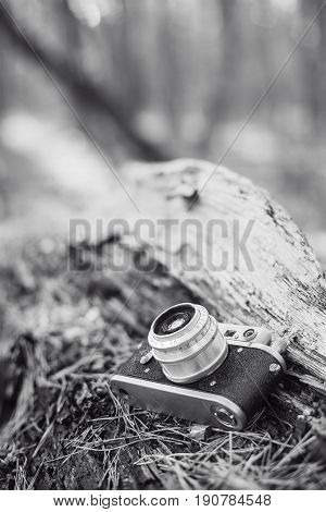 35mm Vintage Old Retro Small-Format Photo Camera On Old Fallen Wood Tree In Forest. Black And White Photo
