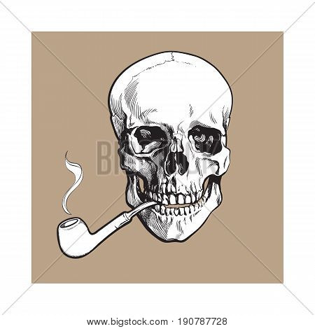Hand drawn human skull smoking lacquered wooden pipe, black and white sketch style vector illustration isolated on brown background. Realistic hand drawing of skull with smoking pipe
