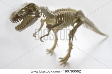 Tyrannosaurus skeleton figurine on white background, facing left