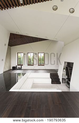 Modern designed interior of spacious white and brown living room