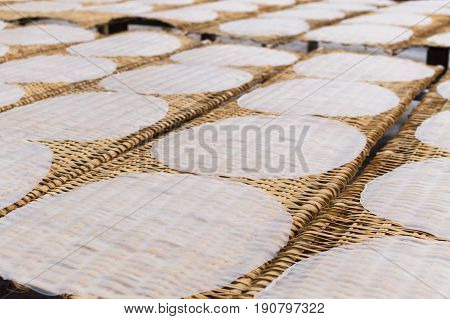 Rice Pancakes Drying On The Sun