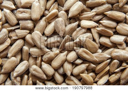 Top view of shelled sunflower seeds close up
