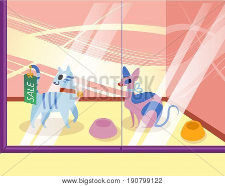 Illustration of a petshop with cats. Lovely cartoon animals in the showcase. vector