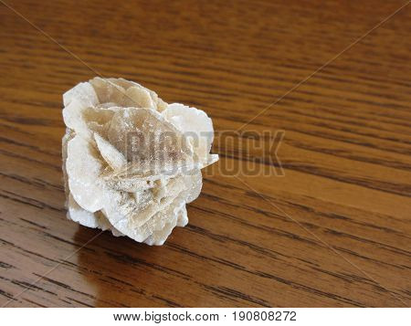 Mineral desert rose on wooden table . Also known as sand rose or rose rock or selenite rose or gypsum rose or baryte rose