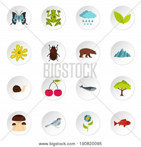 Nature items set icons in flat style isolated on white background