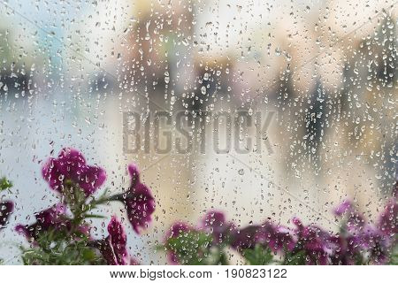 Purple flowers behind the wet window with rain drops, blurred street bokeh. Concept of spring weather, seasons, modern city. With place for your text, for abstract background use