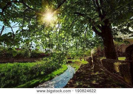 Spring rural landscape with river and green trees. Sun is shining through the branches. Miskolc, Hungary