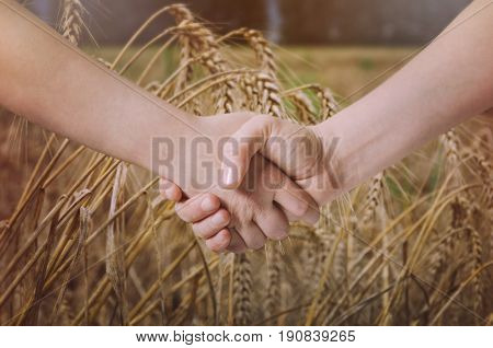 Farmers handshake over the wheat crop. Agricultural business concept.