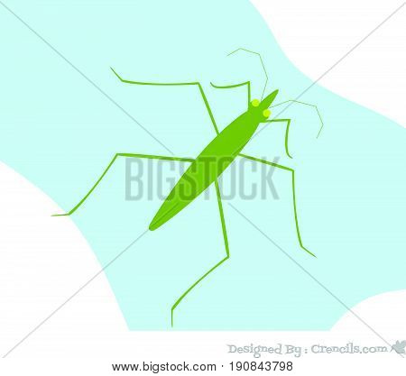 Creepy Green Water Strider Insect Vector Illustration