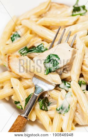Chicken Alfredo Pasta with Spinach. Selective focus.