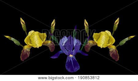 Embroidery fashion design, neckline template with yellow, blue and purple iris stitched pattern vector floral illustration