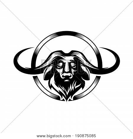 american buffalo head of buffalo.Face of bison, bull.Graphic sketch hand drawn vector illustration.