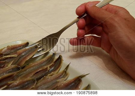 Headless marinated anchovy fish in ceramic plate with fork in hand on white tablecloth background