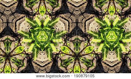 Abstract Photo Leaves Pattern