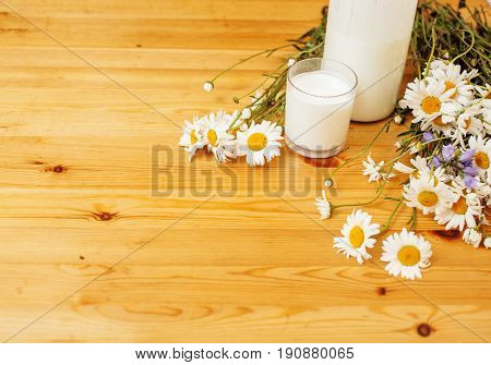 Simply stylish wooden kitchen with bottle of milk and glass on table, summer flowers camomile, healthy foog moring concept close up