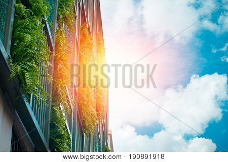 vertical garden at the building wall with blue sky modern office building architecture make ozone in modern city.