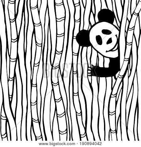 Funny panda in the bamboo forest. Coloring book page. Vector kids illustration.