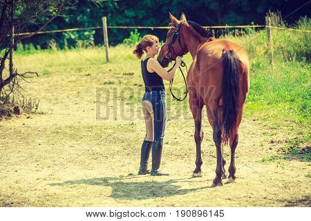 Animal and human love equine concept. Jockey woman walking with horse on meadow