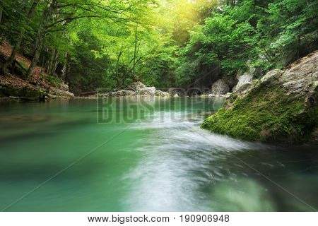 Lake in forest. Nature composition.
