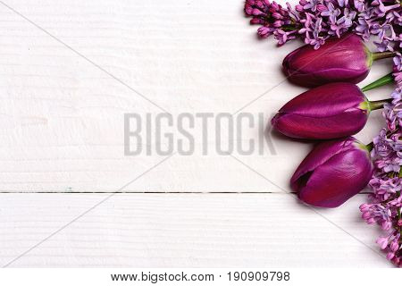 Bunch of lilac and purple tulips on white wooden surface copy space and top view. Spring flowers can be used as background