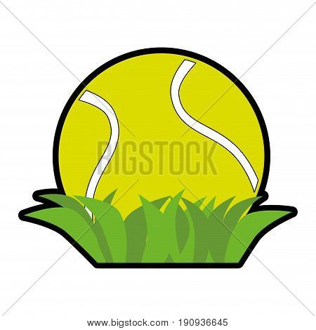 tennis ball and grass icon over white background vector illustration