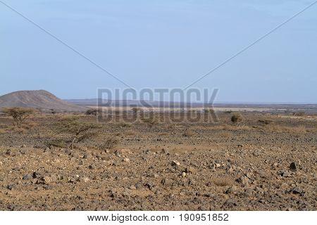 The savannah and bushland in the north of Kenya
