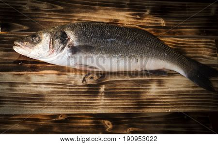 Fresh fish on wooden board. Raw Mediterranean seabass.