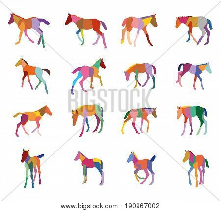 Set of mosaic vector colorful standing trotting galloping foals silhouettes isolated on white background