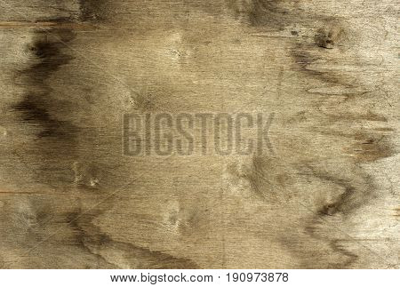 Sheet of old pressed wood, brownish color