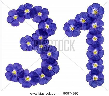 Arabic Numeral 31, Thirty One, From Blue Flowers Of Flax, Isolated On White Background