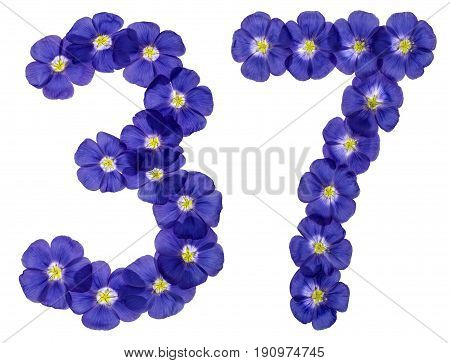 Arabic Numeral 37, Thirty Seven, From Blue Flowers Of Flax, Isolated On White Background