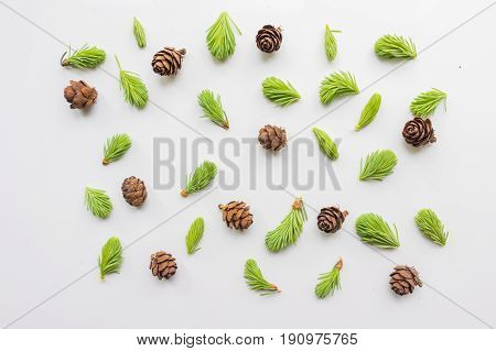 Christmas pattern with tiny fir cones and branches. Cute, light background, backdrop for banners, postcards, ads, covers. The theme of the winter holidays.