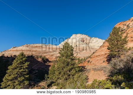 a scenic landscape in Zion National park at sunrise
