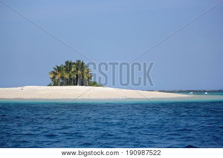Naked Island clump of coconut trees, Philippines A clump of coconut trees dots the Naked Island in Britania Islands in Surigao del Sur, southern Philippines.