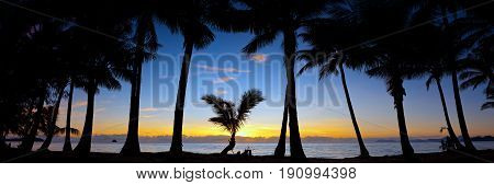 Sunrise at Palm Cove a popular tourist location north of Cairns in Queensland Australia