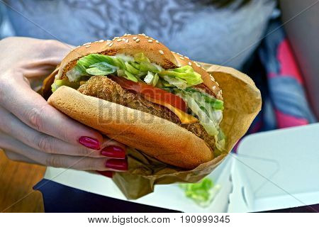 Hamburger from chicken salad of tomatoes and cheese in hand