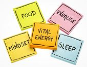 vital energy concept - food, exercise, mindset and sleep handwritten on colorful sticky notes isolated on white poster