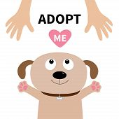 Adopt me. Dog face. Pet adoption. Puppy pooch looking up to human hand paw print hug. Flat design. Help homeless animal concept. Cute cartoon character. White background. Isolated. Vector poster
