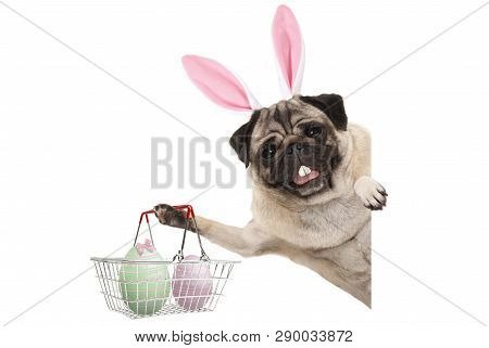 Happy Easter Bunny Pug Dog With Bunny Teeth And Pastel Easter Eggs In Wire Metal Shopping Basket, Is